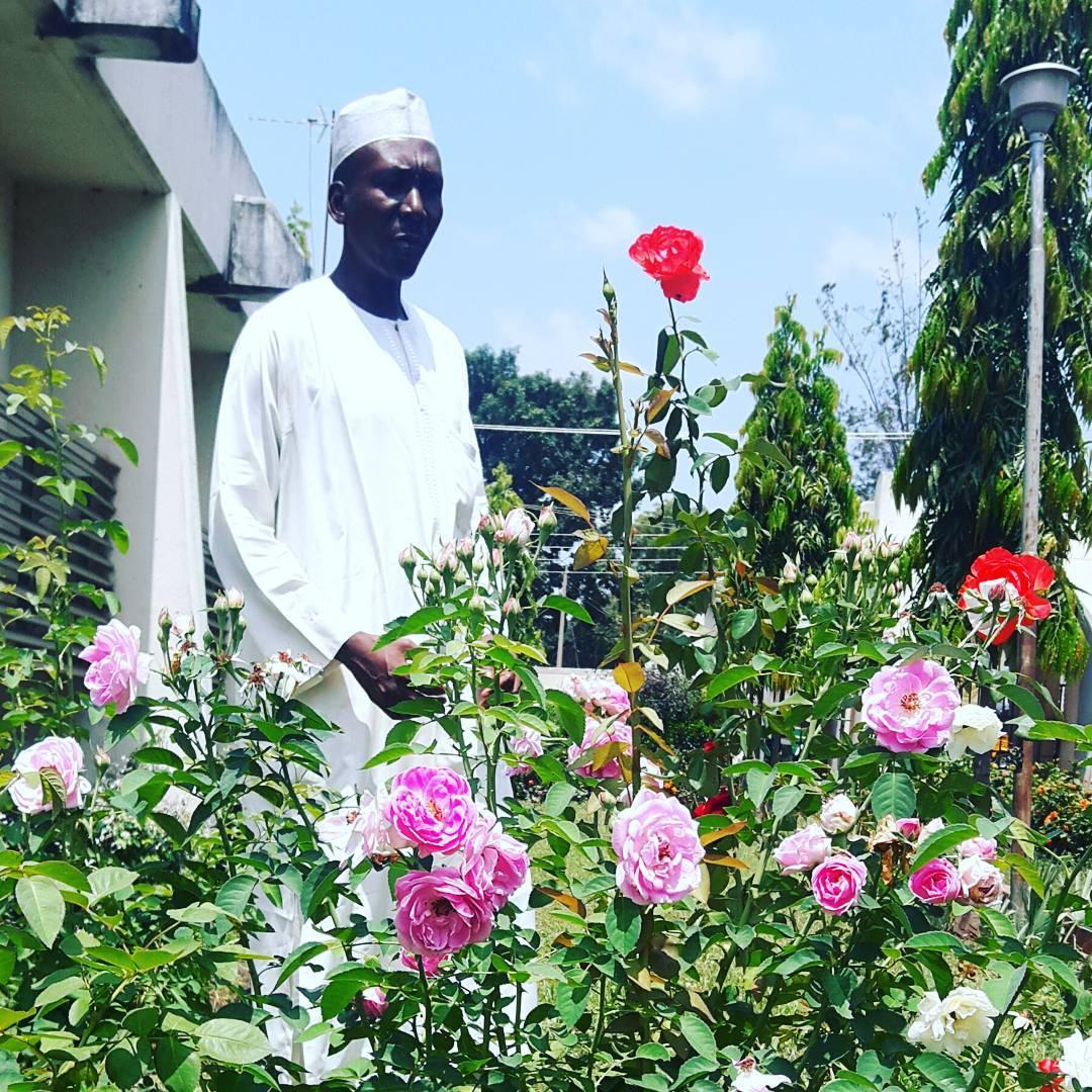 Donwload Photo Khat Unik Arewa House, Ahmadu Bello University… – Yushaa Abdullah