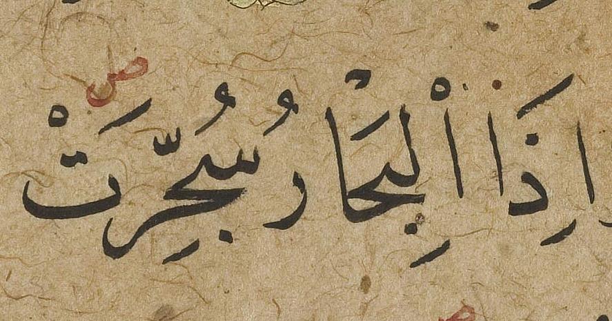 الاستاذ محمد شوقي…