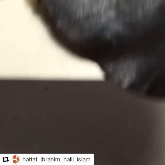 Foto Karya Kaligrafi #Repost @hattat_ibrahim_halil_islam (@get_repost) ・・・ Hat derslerimiz PAZAR günl…- kaligrafer Indonesia posting ulang