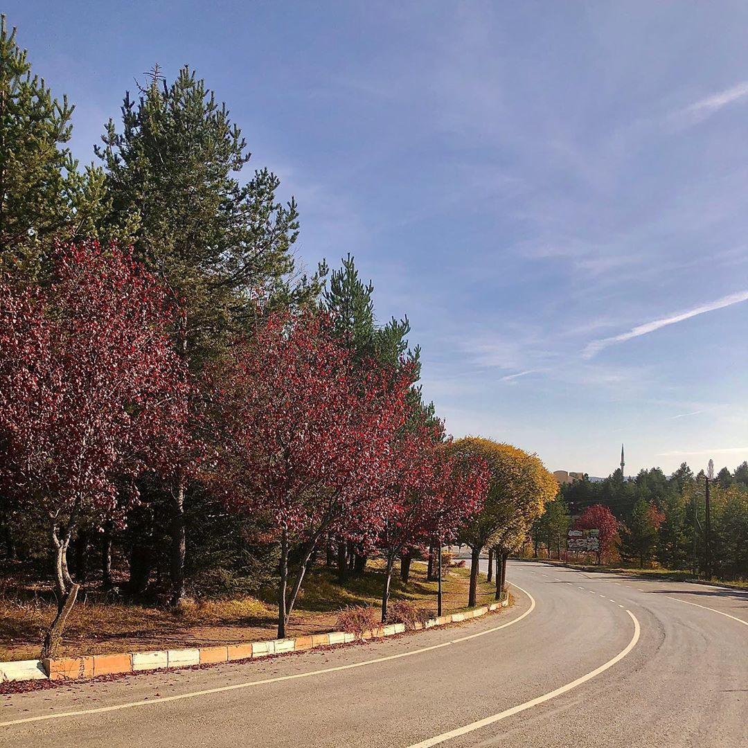 Donwload Photo Kaligrafi Sonbahar #yeşil #doğa…- Osman Ozcay