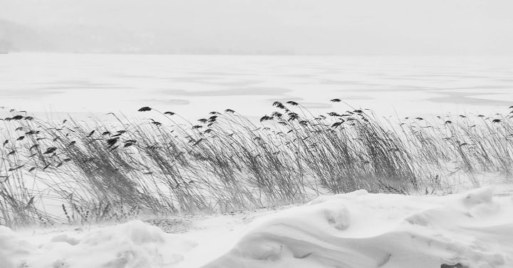 Donwload Photo Kaligrafi #abant #kış #kar #snow #winter…- ozcay