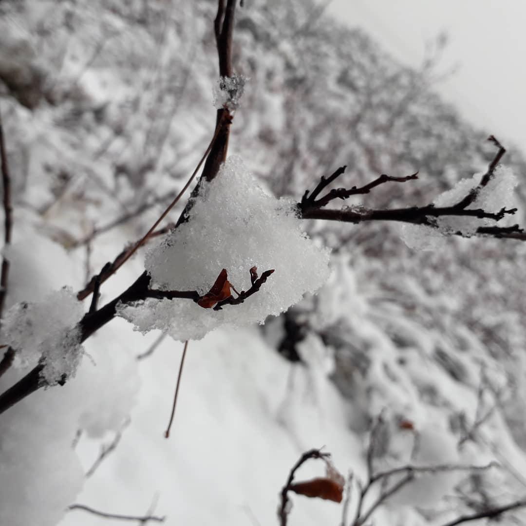 Download Gambar Kaligrafi ی روز زیبا پر برف تهران پروردگارا؛  با برف رحمتت گناهان ما بپوشان آموزش مجازی تل…- Ahmadmalekian