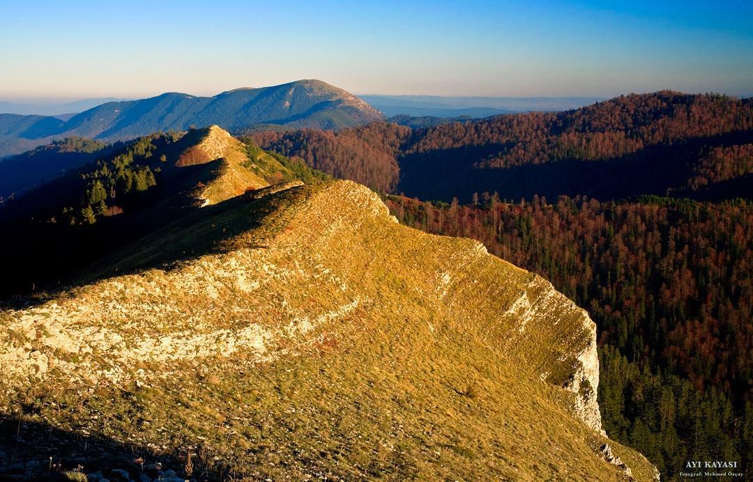 Donwload Photo Kaligrafi Ayı kayası, Bolu Yedigöller…- ozcay