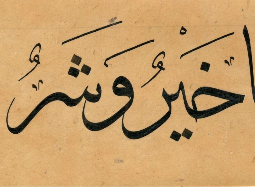 Professional Calligrapher Bijar Arbilly Calligraphy  B.A. #art #calligraphy #arabic #istanbul #dubai #kuwait #uae #hattat #ebru #isla… 251