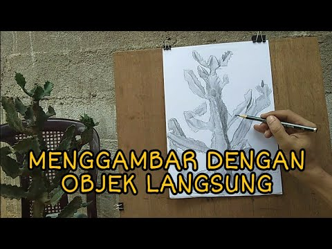 Download Video CARA MENGGAMBAR OBJEK LANGSUNG