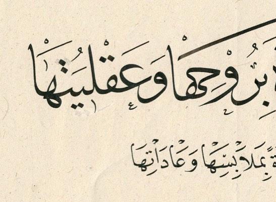 Professional Calligrapher Bijar Arbilly Calligraphy  #farbe #kunst #berlin #nürnberg #calligraphy #istanbul #islamicarts #الخط #الفن ... 141 1
