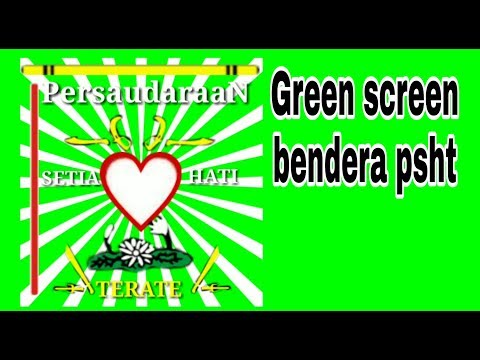 Download Video Green screen bendera psht