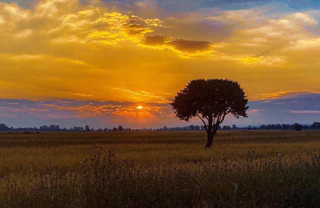 Donwload Photo Kaligrafi Gün batımı #güneş #günbatımı…- Osman Ozcay