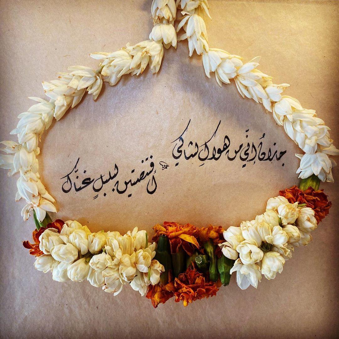 Khat Diwani Ajhalawani/Amr جازانُ إني من هواكِ لشاكي…أفتنصتين لبلبلٍ غنّاكِ #خط #خطي #الخط_العربي #الخ… 46