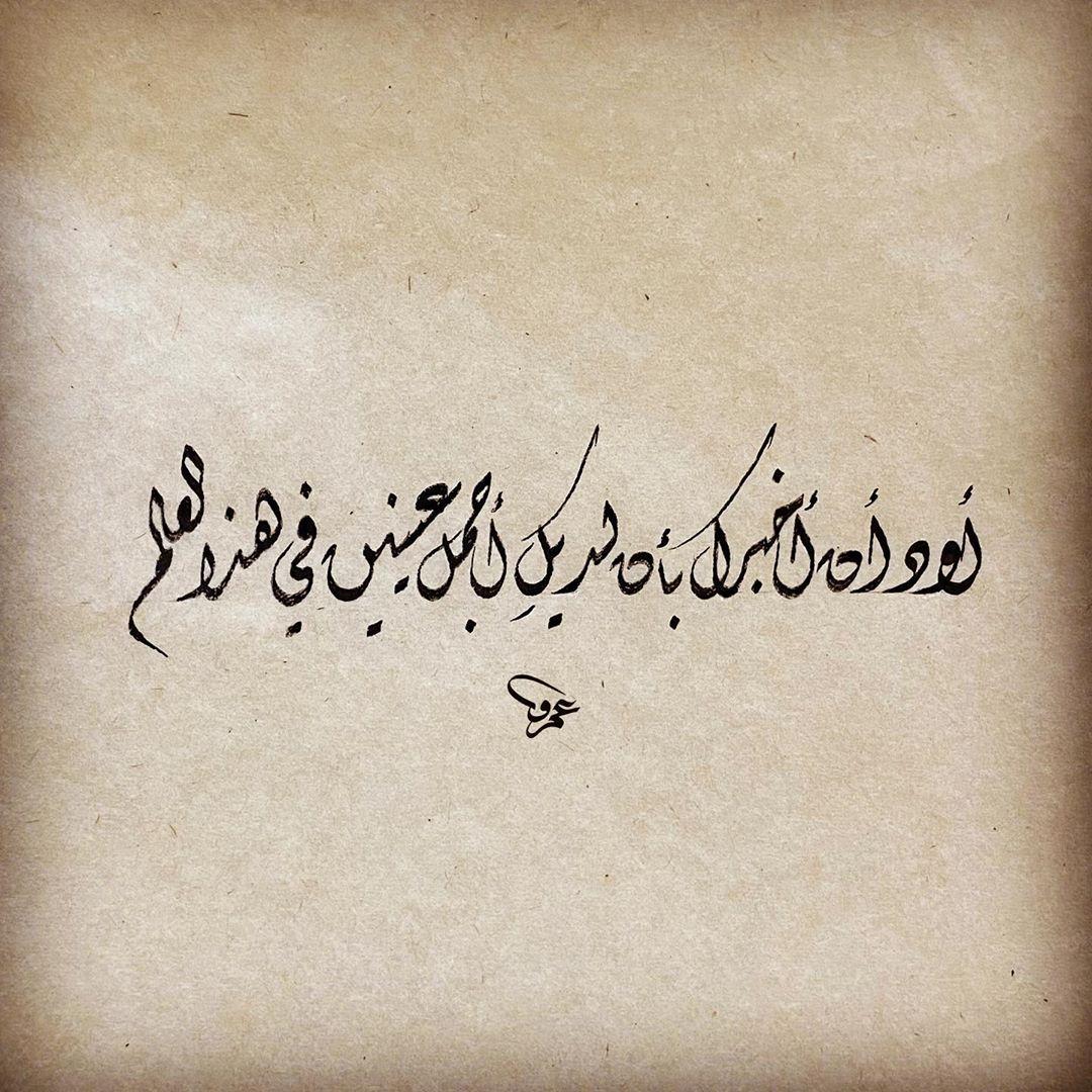 Khat Diwani Ajhalawani/Amr أود أن أخبرك بأن لديكِ أجمل عينين في هذا العالم… 43
