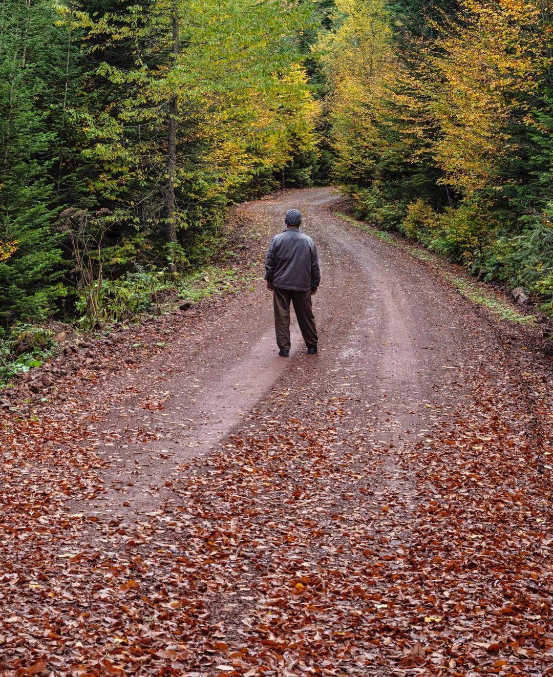 Donwload Photo Kaligrafi #sonbahar #autumn...- ozcay 5