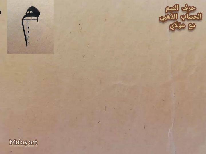 Arabic Calligraphy by Maulay Abdur Rahman  حرف الميم في خط النسخ (( الحساب الذهبي للخط العربي)) سمك القلم 3 ملم... 588 1