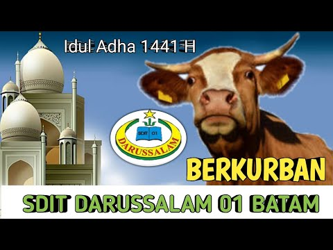Download Video SDIT Darussalam 01 Batam Berkurban