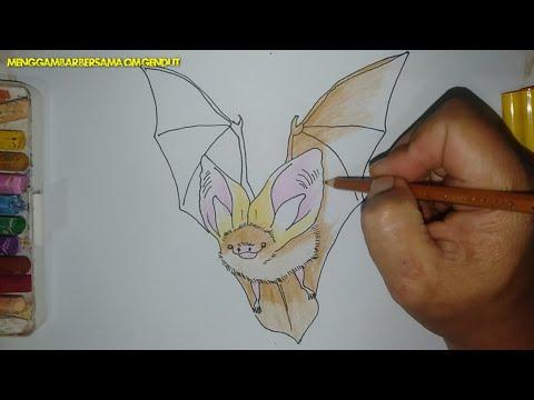 Download Video cara menggambar kelelawar telinga  panjang dengan mudah dan mewarnainya / how to draw bat easy