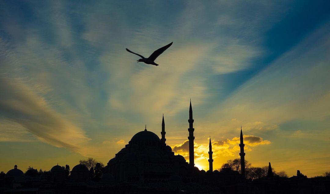 Donwload Photo Kaligrafi Muhteşem Süleymaniye…- ozcay