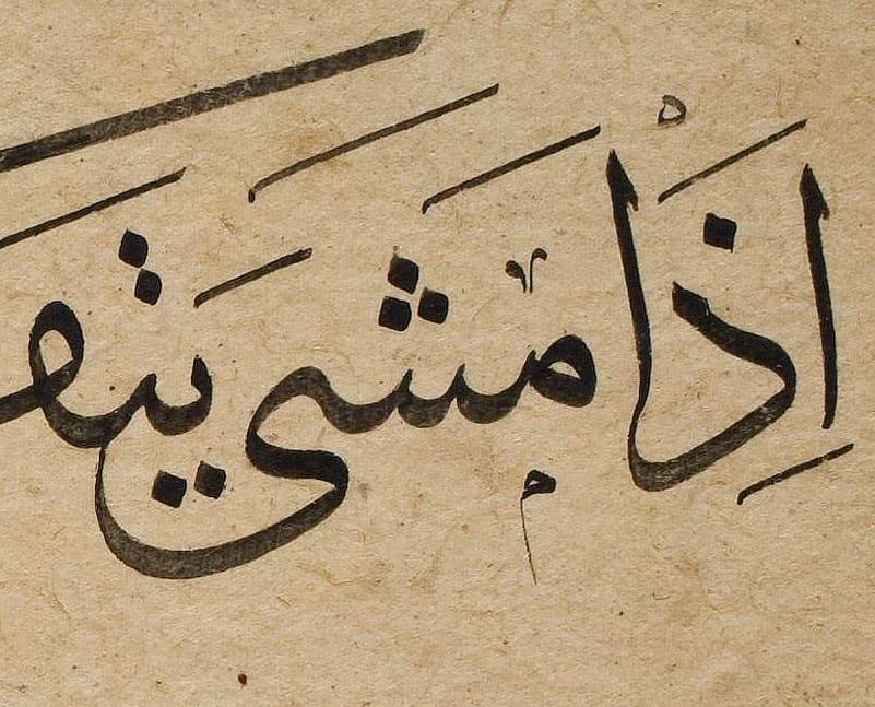 أبو الأشواق…