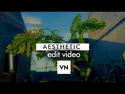Download Video WAJIB TAHU ! Trik Video Aesthetic 2021